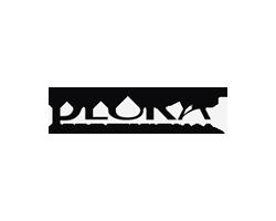 plura_logo_over